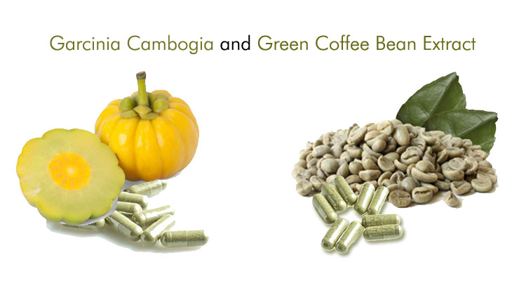 Garcinia Cambogia and Green Coffee Bean Extract