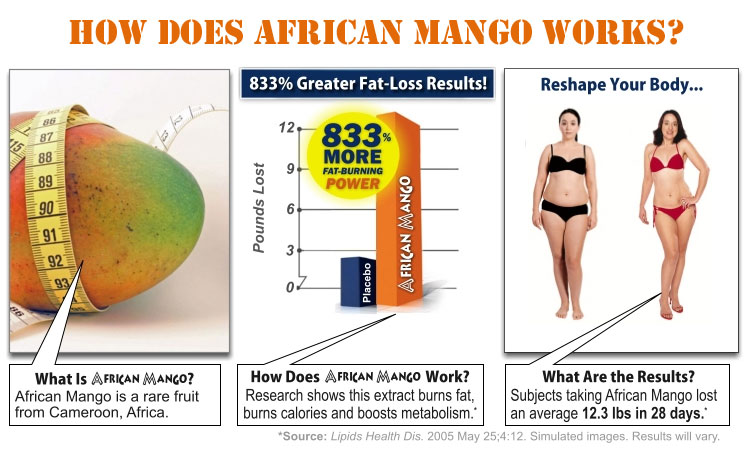 How Does African Mango Works?