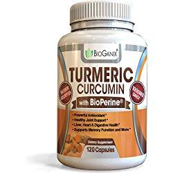 Turmeric Curcumin Extract