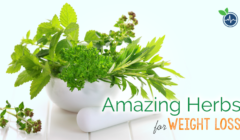 Amazing herbs for weight loss