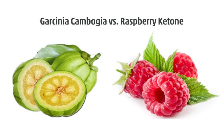 Garcinia vs. Raspberry Ketones