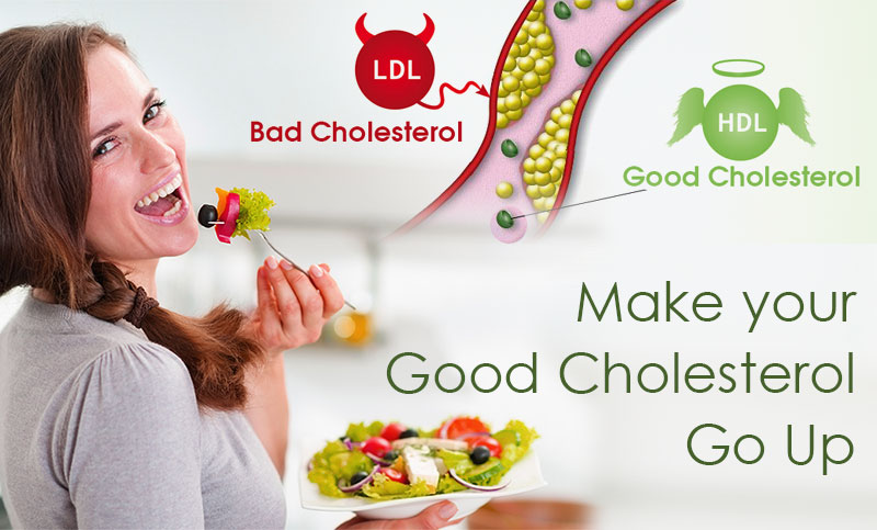 How to increase HDL Cholesterol
