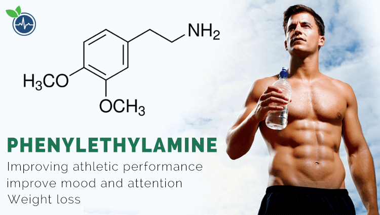 phenylethylamine for weight loss